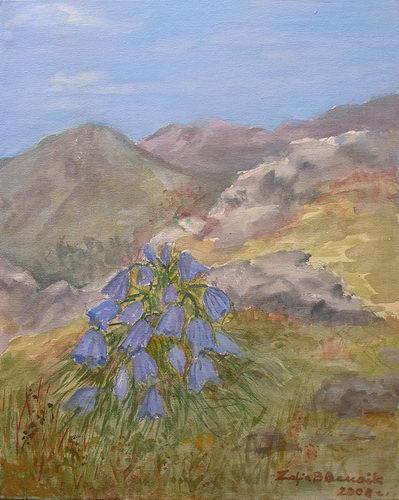 Zofia Biernacik: Dzwonek Alpejski